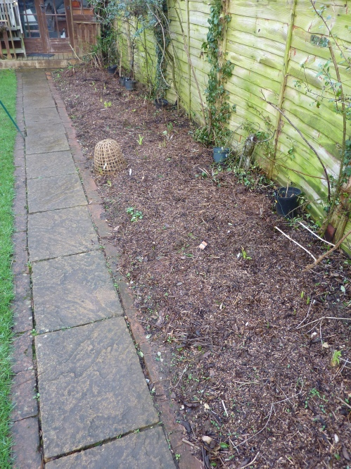 The replanted border with mulch covering