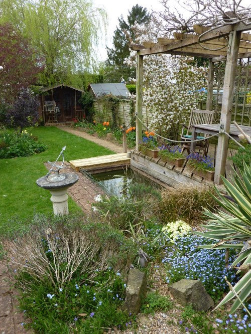 View of the garden showing repaired Pergola, pond and new border