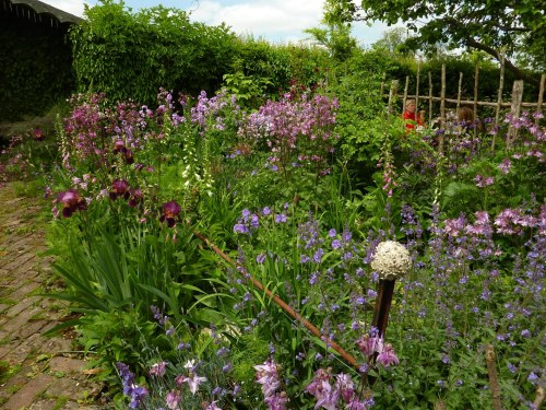 Colourful border at Noth Cottage, Tisbury. Tea tables scattered amongst the flowers