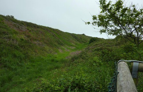 The banks and ditches that cut off Hengistbury Head